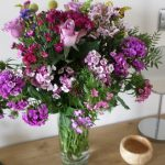 Parkland Site Tonto's View Self Catering Flowers