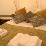 Parkland Glamping Tilly - The Bell Tent